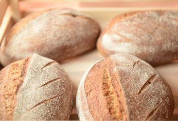 Taste of Bread